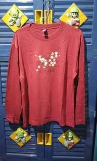Longsleeve tshirt / blouse / top / sweatshirt / atasan