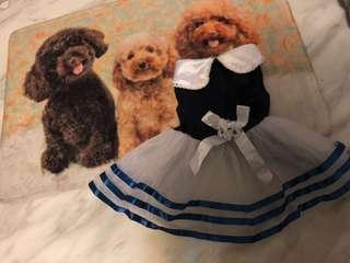 Pets blue dress