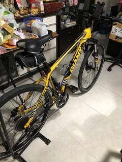Giant Talon Mountain Bike - original