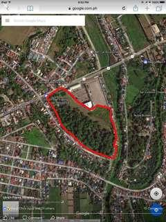 Former resort w/ approx 180 mango & other fruit bearing trees for sale