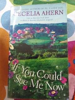 If You Could See Me Now by Cecilia Ahern