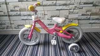 Schiwnn kids bicycle