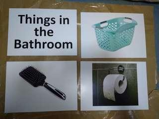 Things in the Bathroom - Brand new Flashcards, Glenn Doman and Shichida