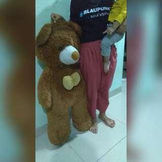 Boneka Bear big
