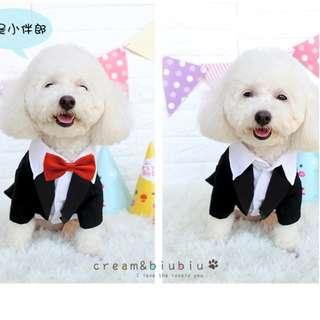 Wedding Season BN Arrivals! BN Cute Suave Pets Dogs Cats Best Man Tuxedo and Wedding Gown! Ready Stocks!!