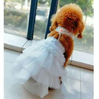 Wedding Season BN Arrivals! BN Pretty Princess Pets Dogs Cats Puppy Wedding Gown!