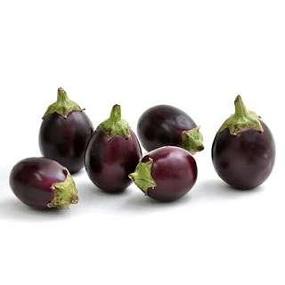 🚚 Indian Eggplant Seeds For Gardening X 20 Seeds