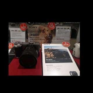 Sony 6000 SEL35F18