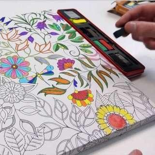 "JOHANNA BASFORD Colouring Canvas Secret Garden Canvas painting with Patterns 30cm*60cm/12""*24"""