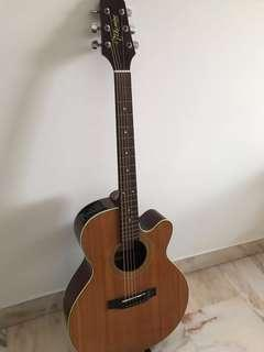 Acoustic Guitar — Takamine G Series