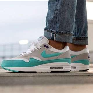 Nike Air Max 1 anniversary edition
