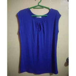 Blue Top (can fit S-M)