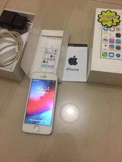 Iphone 5s 16gb mulus