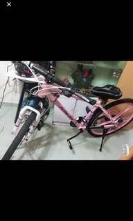 極新forever單車