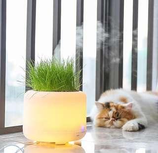 久安薰舍 可種植香薰機 加濕器 家用空氣淨化器 超聲波香薰燈 aroma diffuser