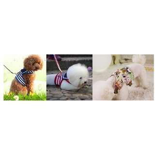 🚚 Dog Collar / Hrness / Leash