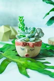 Miss Potts - Handmade Head Planter