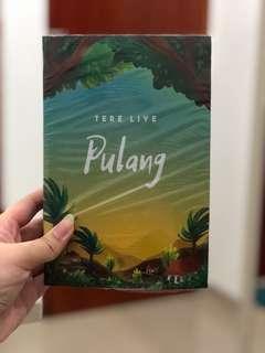 Novel Pulang