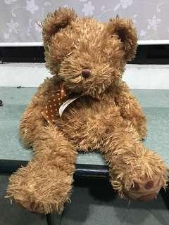 **FAST SALES** Adorable medium sized bear