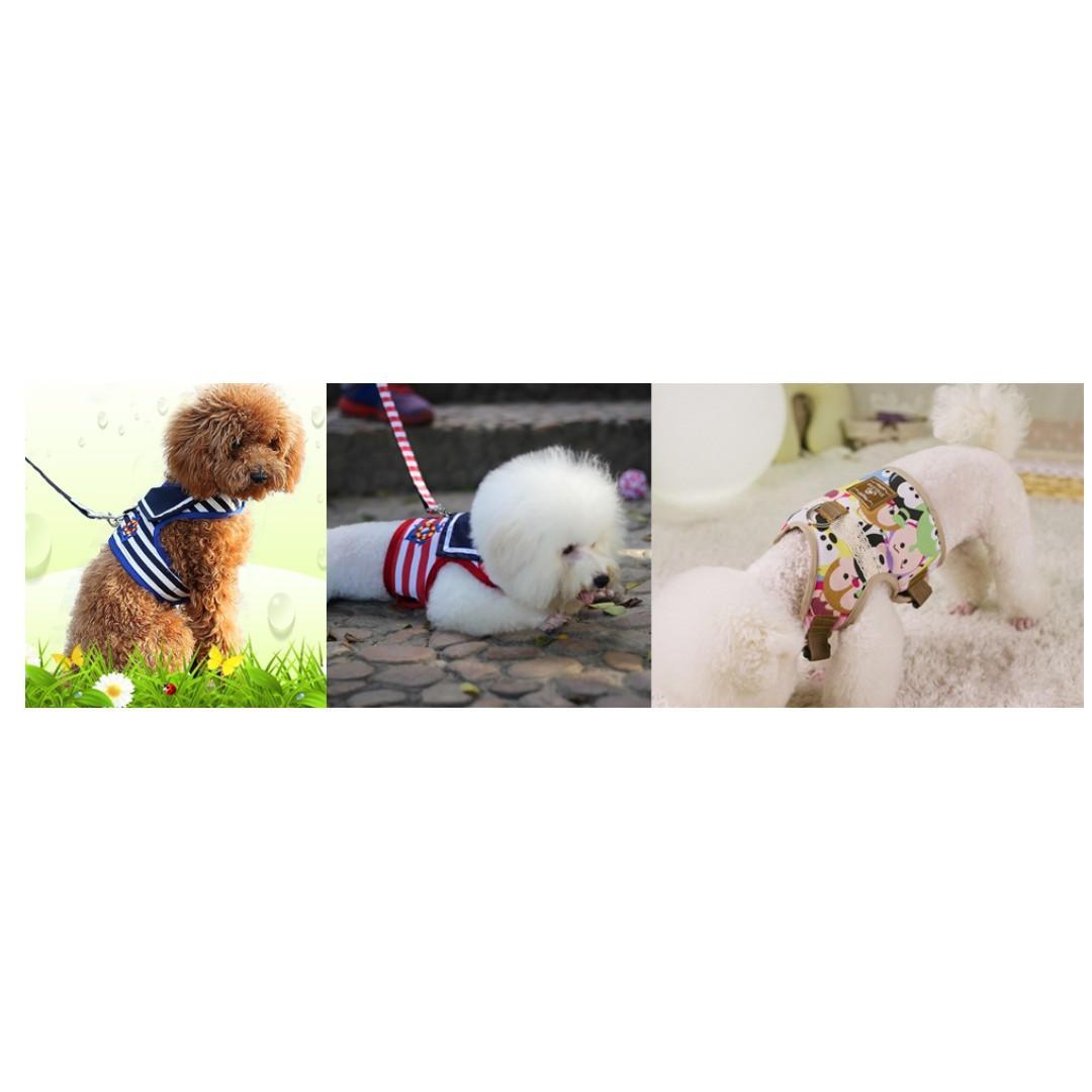 Dog Collar / Hrness / Leash