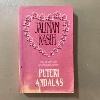 Novel Melayu: Jalinan Kasih | Puteri Andalas
