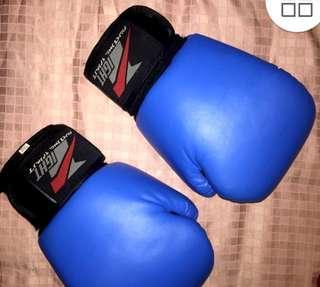 Fighting Spirit 14 oz Boxing Gloves
