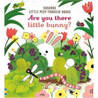(Brand New) Are You There Little Bunny? [Little Peep-Through Books] [Board Book]  By: Sam Taplin