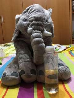 🚚 安撫象