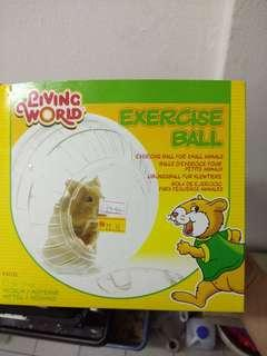 Exercise ball Living world
