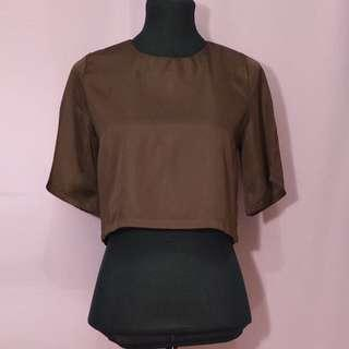 Lustrous brown cropped top