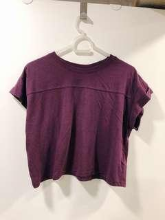 H&M BURGUNDY CROPPED TOP