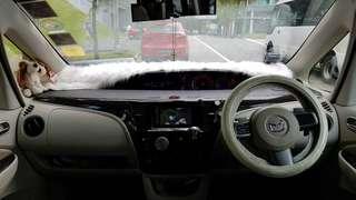 Mazda Biante 2.0 Auto Deluxe