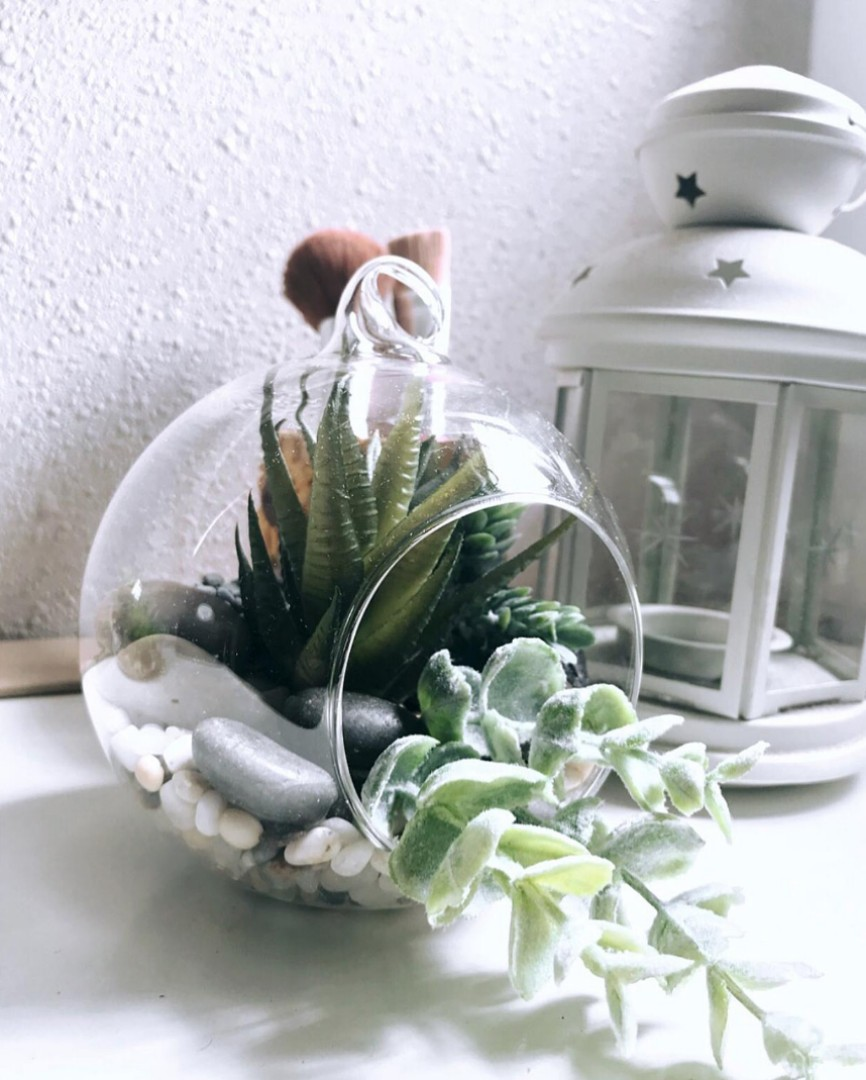 Affordable Succulent Glass Globe Terrarium Planters With Artificial