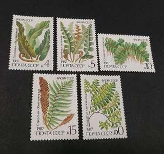 USSR 1987. Ferns. Complete stamp set