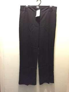 Millers dress pant size 16
