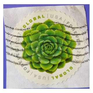 Stamp USA 2017 Green Succulent Global Forever Rate