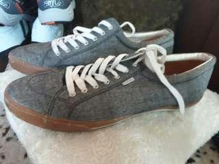 Pointer canvass sneakers