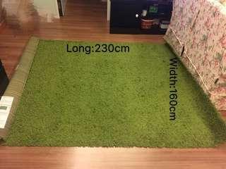 Ikea Rug/ Ikea Carpet