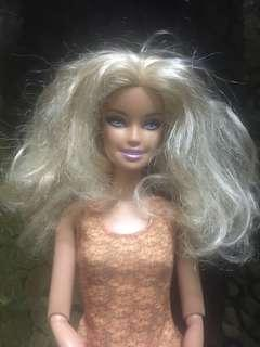 Full articulate Frizzy hair Barbie
