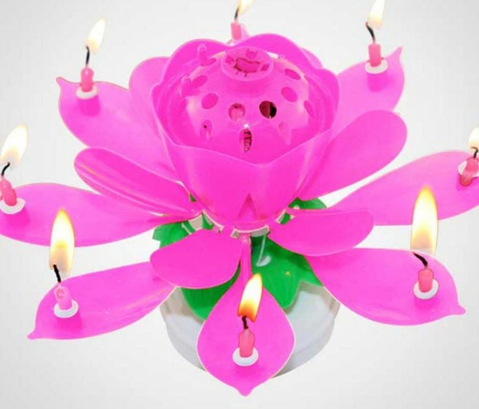 Fireworks Birthday Candles Romantic Musical Lotus Flower