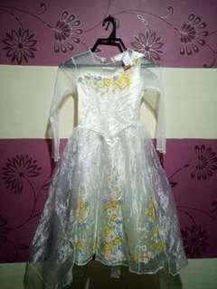 Cinderella Princess Custom(Size 6y/o)