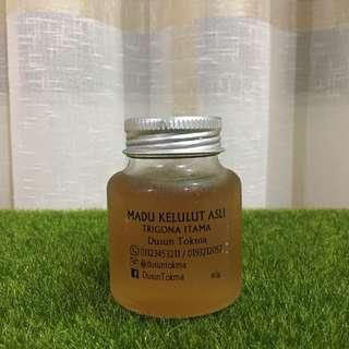 MADU KELULUT ASLI / PURE STINGLESS BEE HONEY
