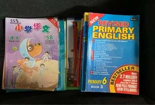 Primary 6 Textbooks & Assessment Books