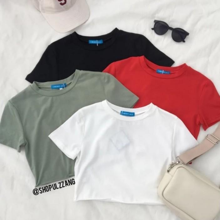 Basic Plain Crop Top Tee Shirt T Ulzzang Korean Style Essential