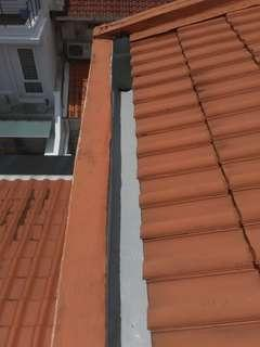 Roof Leakage Specialist 防水 / 屋顶漏水