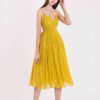 BNWT Doublewoot Lace Midi Dress