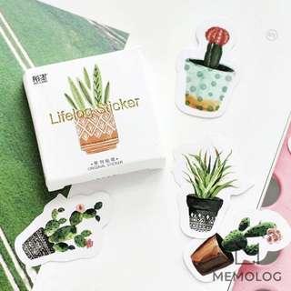 45pcs Cute Succulent Cactus Plant Sticker Pack