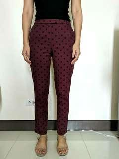 Topshop polka dot maroon pants