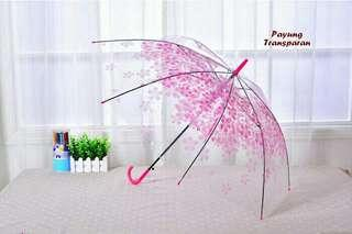 Payung Transparan Sakura