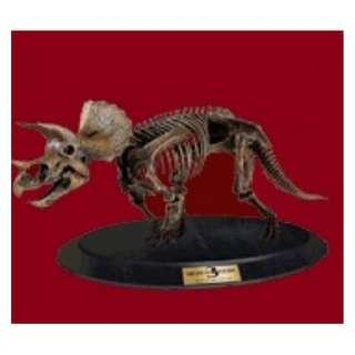 4D Triceratops Skeleton Puzzle ~ Brand New